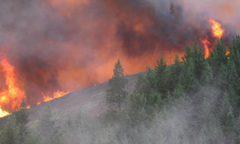 Douglas Complex fire