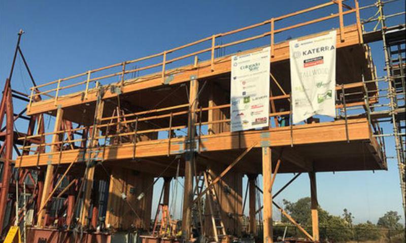 Cross Laminated Timber building